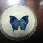 Бабочка в рамке № 9