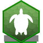 Аренда черепах